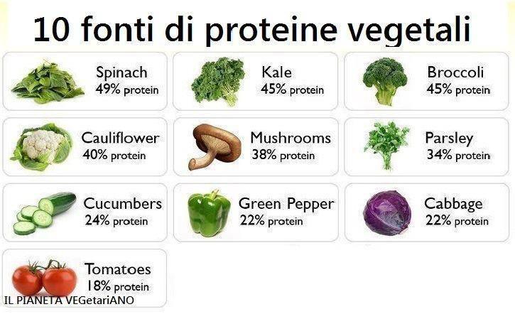 proteine%20nei%20vegetali